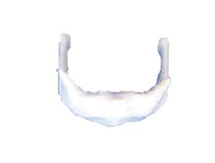 ZM1014 舌骨放大模型