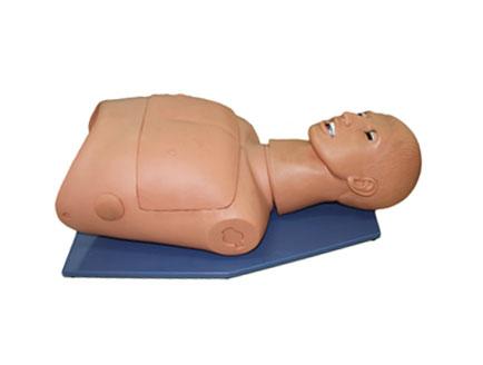 ZMJY/J-008 半身气管插管及CPR模型