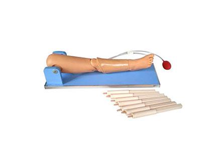 ZMJY/L-2024骨穿刺及股静脉穿刺模型