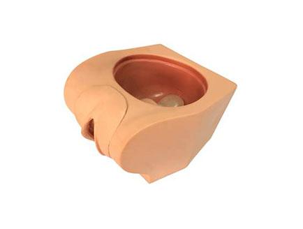 ZMJY/F-0030  女性避孕实践模拟器