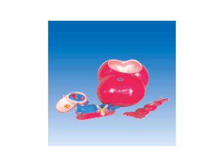 ZM6023-1 放大型活动心脏发生示教模型