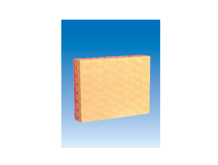 ZM6054 单层立方上皮组织