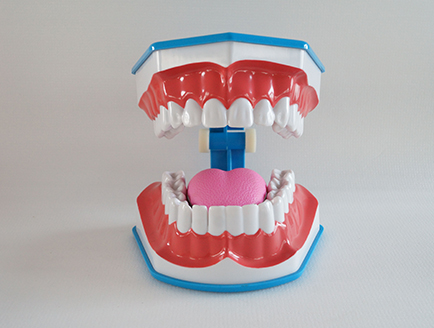 ZM-DSC02052_N14蓝色刷牙模型