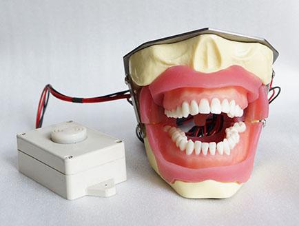 ZM-DSC02428_E16蜂鸣器的拔牙麻醉模型
