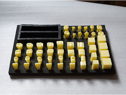 ZM-P16 1-1_D12牙冠雕刻顺序模型