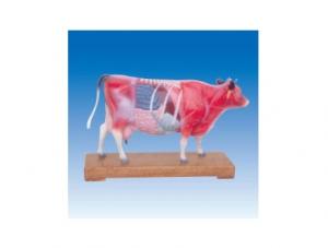 ZM3017 牛体针灸模型