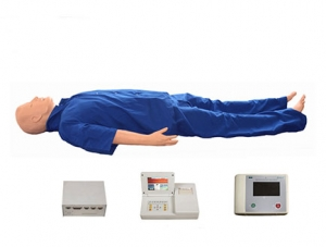 ZMJY/ACLS-10004高级成人综合急救训练模拟人(ACLS高级生命支持、嵌入式系统)