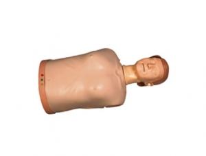 ZMJY/CPR-006 半身心肺复苏训练模拟人