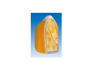 ZM7026 玉米子粒模型
