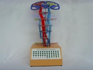 ZM8002 微电脑中枢神经传导直观模型